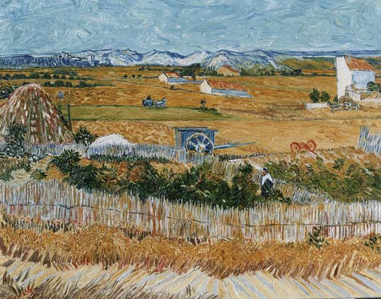Reproductions and Copies of masterpieces oil on canvas Vincent Van Gogh revisited by Ida Parigi's paintings: Harvest at La Crau